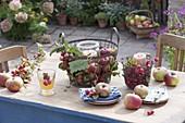 Tischdeko mit Äpfeln (Malus) und Zieraepfeln in Drahtkoerben
