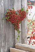 Herz gebunden aus Rosa multiflora (Mini-Hagebutten) und Hedera