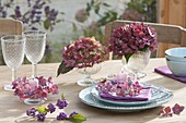 Herbstliche Tischdeko im Wintergarten : Blüten von Hydrangea