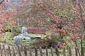 Blick über den Gartenzaun auf rote Bank, Malus (Zierapfelbaum)