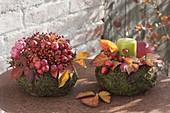 Herbstliche Körbchen aus Moos und Drahtwein mit Malus (Zieraepfeln)