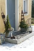 Bepflanzte Zink-Gefässe am Hauseingang