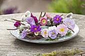Tellerkranz aus Birkenzweigen ( Betula ) mit Primula ( Primeln ), Bellis ( Tausendschoen ), Viola cornuta ( Hornveilchen ) und Palmkaetzchen