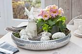 Silbertablett mit Primula acaulis (Primel), Keramik-Osterhase
