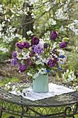 Lila-weisser Fruehlingsstrauss unter Kirschbaum : Tulipa 'Purple Prince'
