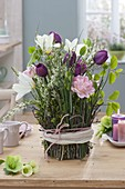 Tulipa (Tulpen) und Zweige von Spiraea (Spierstrauch)