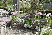 Beet durch die Jahreszeiten im Frühling