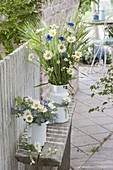Ländliche Straeusse in Emaille-Kannen : Leucanthemum vulgare