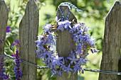 Kränzchen aus Campanula (Glockenblume) am Gartenzaun