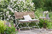 Kleine Terrasse aus Kies und Holz im Garten, Bank vor Rosa multiflora