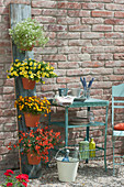 Vertikal gärtnern spart Platz