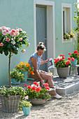 Hauseingang mit Rosenstamm und Balkonblumen