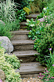 MAN Made STEPS Made TO Look Like WOODEN SLEEPERS LINED with GRASSES & AJUGA. STONEMARKET'S 'A WATERSIDE RETREAT' DESIGNED by GEOFFREY WHITEN. CHELSEA