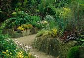 PATH THROUGH THE FOLIAGE Garden with CHOISYA TERNATA 'SUNDANCE', VARIOUS HEUCHERA, GRASSES, DWARF BAMBOOS, PHORMIUM, CORDYLINE & ACANTHUS. THE ABBEY HOUSE, WILTSHIRE.