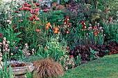 PAPAVER 'Patty'S PLUM',Iris 'Shampoo',ALLIUM 'Purple Sensation',Carex BUCHANII. White HOUSE / Elisabeth WOODHOUSE