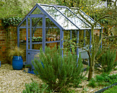 Clare MATTHEWS Greenhouse PAINTED with SADOLIN SUPERDECK 'Wild GRAPE'. GRAVEL Garden with Rosemary