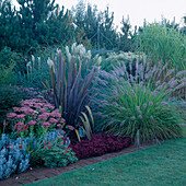 PENNISETUM ALOPECUROIDES, CORTADERIA 'PUMILA', PHORMIUM SEDUM 'AUTUMN JOY'. THE Old VICARAGE, Norfolk