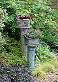 CERAMIC PLANT STANDS / PEDESTALS by Emma LUSH IN THE Sun ALLIANCE / AMATEUR Gardening GARDEN. CHELSEA 97