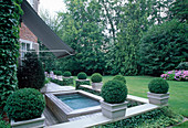 DECKED TERRACE with Box BALLS AND Hot TUB with LAWN BEYOND