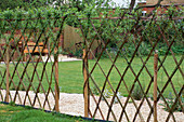 Living WILLOW TRELLIS Screen Made by Clare MATTHEWS