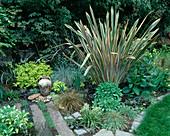 Phormium 'Sundowner', Sedum 'Autumn Joy', Carex 'Comans Bronce', Nicotiana 'Lime Green'
