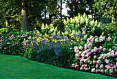 Beet mit Hortensien und Schmucklilien