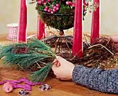 Adventskranz binden. 4. Step: Korb mit Moos und Folie auslegen, Pernettya