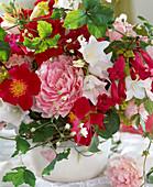 Rosa rugosa (Apfelrose), Paeonia (Pfingstrose), Campanula