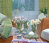 Kleine Sträuße aus Margeriten und Flockenblumen, Ranke vom Zimmerjasmin und Kränzchen aus Schleierkraut