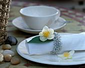 Serviette mit Camellia sinensis