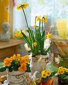 Tontöpfe in Filztüten stellen mit Narcissus / Narzissen,
