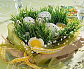 Weizengras in einer Schale ausgesät und in Tüte gestellt, österlich dekoriert