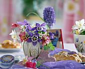 Aquilegia caerulea 'Spring Magic' weiß, rosa-weiß, blau-weiß