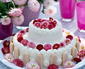 Torte mit Bellis / Tausendschönblüten dekoriert