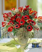 Tulipa-Hybr. 'Arma', Anemone coronaria / Kronenanemone,