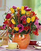 Tulipa-Hybr. 'Arma' (rot) + 'Kareol' (gelb), Anemone coronaria