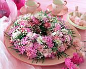 Kranz aus Phlox / Flammenblüten, Dianthus caesius / Nelke,