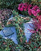 Grabgesteck: Picea abies / Fichte u. Zapfen, Hedera / Efeu,
