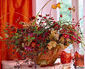 Rosa / Hagebutten und Ranken, Rubus / Brombeerranken, Parthenocissus / Wilder Wein,