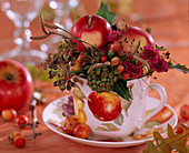 Malus / Äpfel und Zieräpfel, Hedera / Efeu, Hypericum / Johanniskraut, Betula / Birken