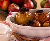 Bratäpfel, Malus / Äpfel