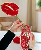Vase mit bunter Wäscheleine als Steckhilfe füllen 2/3