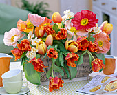 Tulipa 'Ad Rem' und 'Parrot' / Tulpen, Papaver orientale / Seiden-