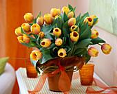 Tulipa 'Ad Rem' / Tulpenstrauß, Salix alba 'Tristis' / Trauerweide