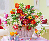 Tulipa 'Claudia', 'Ad Rem', 'Kees Nelis' u. 'Crispa'/ Tulpen,