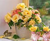 Rosa 'Frühlingsgold', 'Abraham Darby' / Rosenstrauß am Fenster