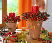 Rosa / Hagebuttenkränze als Kerzenringe