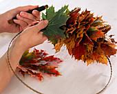 Ahornkranz: Acer / Ahornblätter auf Drahtring zum Kranz binden