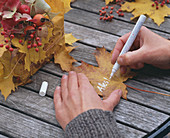 Herbstlaub als Geschenkverpackung: 2/3. Acer / Ahornblätter, Rosa / Hagebutten,