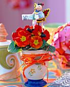 Geldgeschenk: Primula acaulis / Frühlingsprimel in Kaffeebecher,